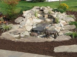 Pondless waterfall with dog fountain