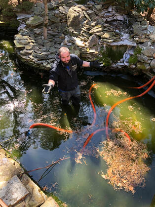 Professional pond cleaning and maintenance in South Jersey by Landvista Aquascapes