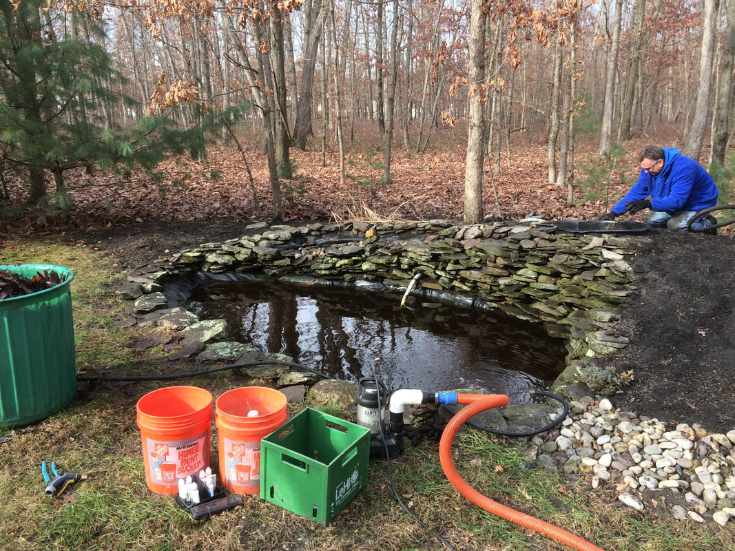 winterizing a backyard pond in NJ