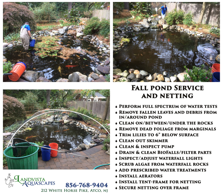 Aquascape Nj: Pond Help Articles-South Jersey
